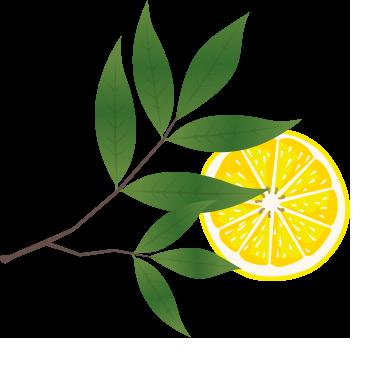 biologische limoncello woerden